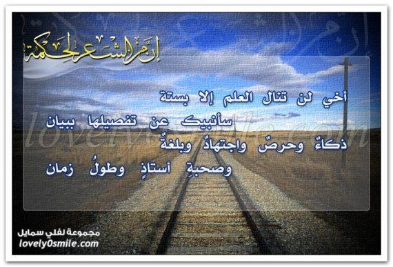 akhi Syair arab   Imam Syafii